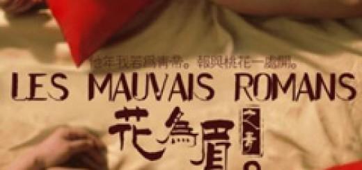 hua-wei-mei-bad-romance-mauvais-romans-2011