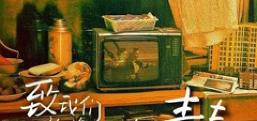 so-young-chinese-film-2013-zhao-wei-zhi-qing-chun
