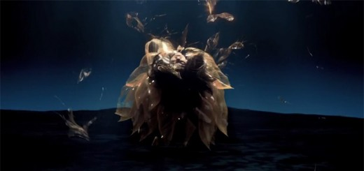 bjork-black-lake-mv
