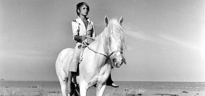 white-mane-1953