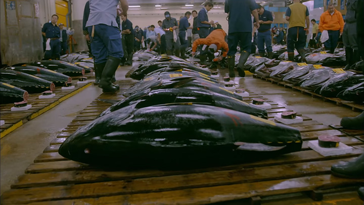 theodore bestors tsukiji the fish market at the center of the world Encuentra tsukiji: the fish market at the center of the world (california studies in food and culture) de theodore c bestor (isbn: 9780520220232) en amazon envíos gratis a partir de 19.